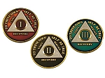 Tri-Colored Recovery Medallions