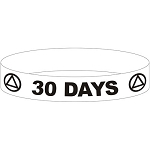 AA 30 DAY Wristband - GRAY