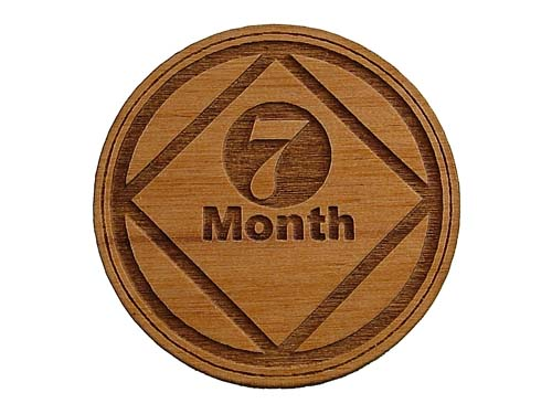 7 month na anniversary medallions and recovery chips seven months