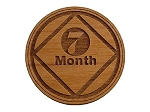 7 Month NA Recovery Coin