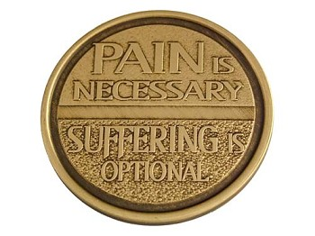 Pain Is Necessary - Suffering Optional Chip