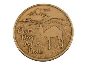 One Day at a Time Camel