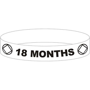 NA 18 Month Wristband - GRAY